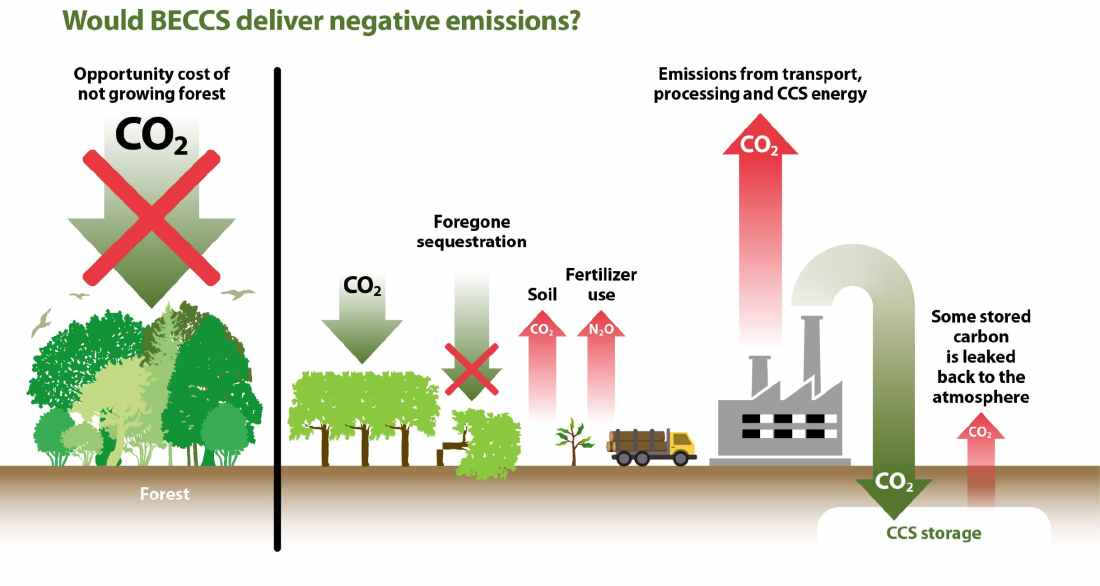 infographic_ Would BECCS deliver negative emissions